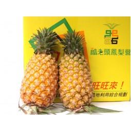 酷老頭鳳梨 (12顆/12公斤)